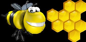 О пасеке Дяди Паши, мёд, продукты пчеловодства